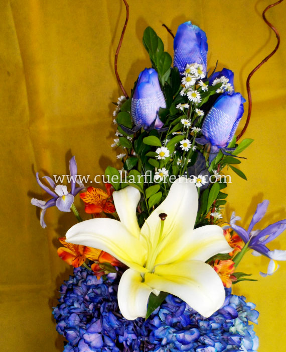 Canasta De 5 Rosas Azules
